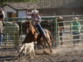 Summer Rodeo Roping